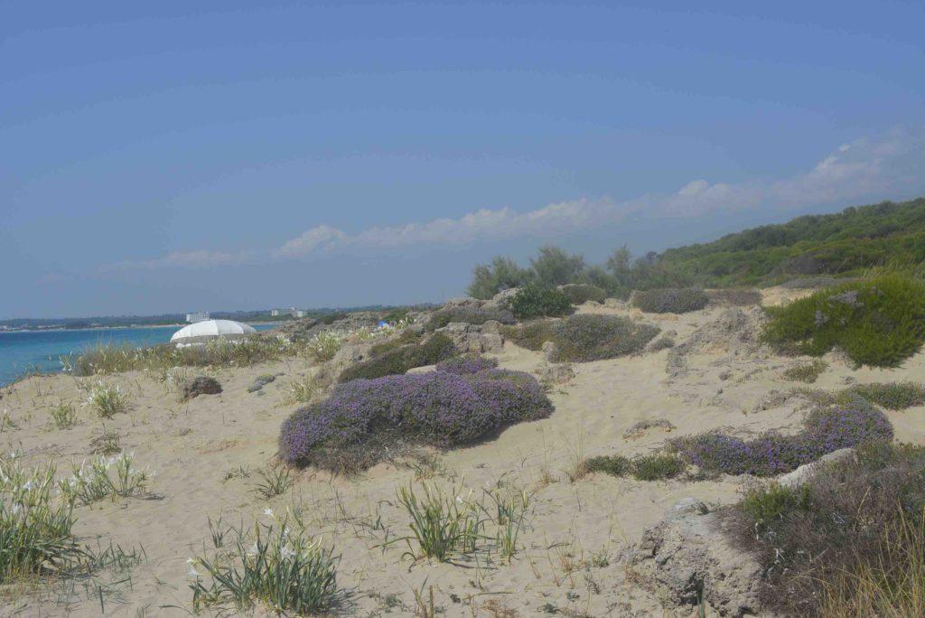 Salento Ionische kust Punta Suina